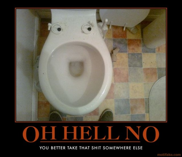 oh-hell-no-toilet-funny-poop-demotivational-poster-1284074784-min