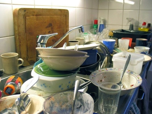 Petpeeves_dishes_commonswikimediaorg-min-533x400-min